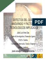 10_defectosdelqueso.pdf
