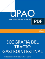 06 - Gastrointestinal