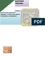 175176653-Rotafolio-Parasitosis.docx