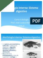 Ictiologia Sistema Digestivos LOAIZA