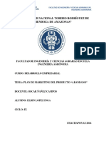 Plan de Marketing Arandano PDF