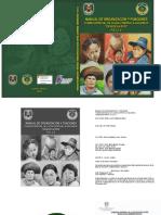 Manual de Organización y Funciones FELCV