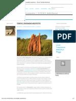 Termitas, Consumadas Arquitectos - Biocon Sanidad Ambiental