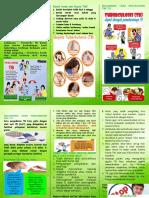 Leaflet TB Asli