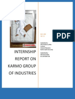 Intern Report on Karmo