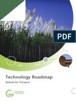 Biofuels Roadmap