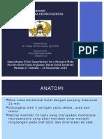 PPT Referat Ablasio Retina