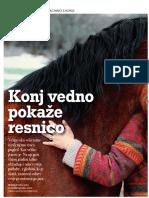 Jana 29. 11. 2016, clanek o coachingu s konji,Natalie C. Postruznik, Insights