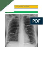 Atlas Radiologi