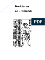 MERIDIANOS-RYODORAKU-JAPONES