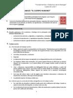 Trab.-FDB-Cuerpo Humano (16-17)