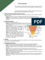Tema 3 La geosfera.pdf