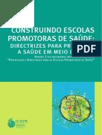 Publicação Construindo Escolas Promotoras de Saúde..