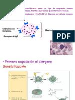 12.- Trastornos Inmunes 2014.Ppt