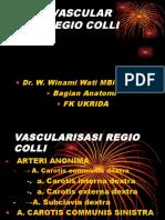 Vascularisasi Regio Colli