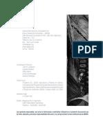 Los Impactos Del Programa de Ajuste Estructural_bolivia