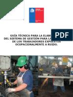 Guia_Tecnica_Elaboracion_Sistema_Gestion.pdf