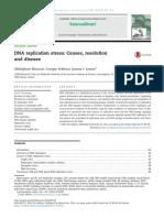 Artigo 01 DNA Replication Stress Causes Resolution
