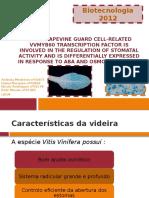 Biotec Completo V3