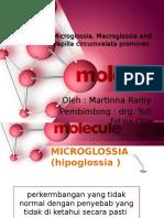(BARU )makroglosia microglossia dan papilla circumvata prominen MARTIN.pptx