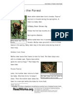 620_a_fawn_in_the_forest.pdf