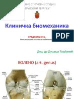 10 koleno (1)