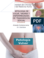 Tema 2 Ginecologia