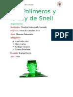 Los Polímeros y La Ley de Snell