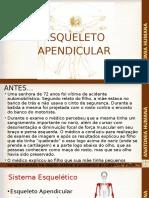 Anat_hum Esqueleto Apendicular