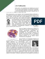 Teorias de unificacion.pdf