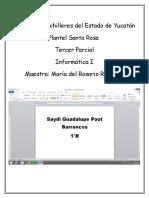 cobayinformatica1