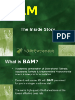 The Story of BAM Presentation_2015