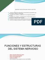 Actividad Del Sistema Nervioso Cs2 Iris Fabiola Hernandez Morales