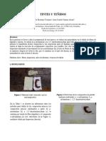 Informe de Tintes y Teñidos