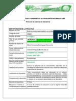 Protocolo Componente Practico 2016-16-4