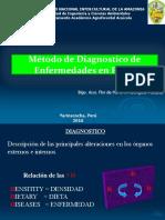 Clase 05. Método de Diagnóstico de Enfermedades en Peces
