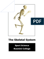 3 skeletal system