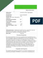 RESUMEN EJECUTIVO BAMBINO.doc
