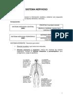 copia-de-sistema_nervioso_alonso1.pdf