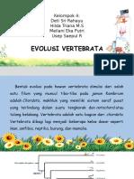 evolusi vertebrata