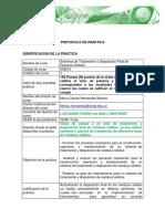 358012 Formato Protocolo Practica