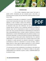 Vitaminas PDF