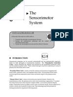 Sensorimotor System