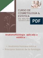 Curso de Cosmetologia y Estetica -w Slideshare Net 69 (1)