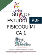 Guía de Estudio de Fisicoquímica 1 (2)