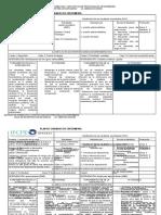 1 Formato Plan Cuidados Nanda 2011
