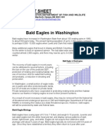 Bald Eagles - Washington Fact Sheet