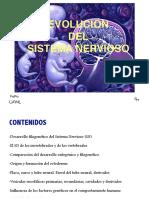 Desarrollo SN Genetica Neuroplasticidad