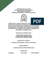 50106463.pdf