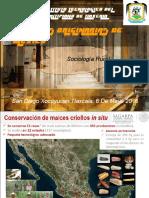 35 Razas Originarias de Mexico